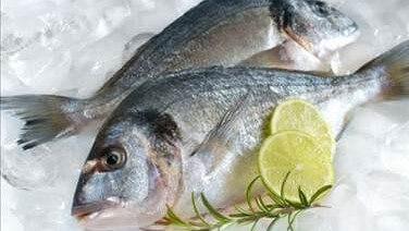 Balık Nasıl Saklanmalı?